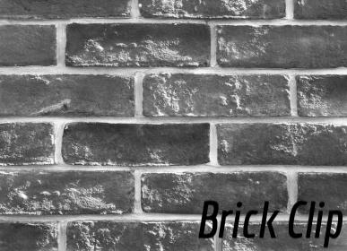 Brick Clip System-605311-edited.jpg