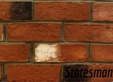 Statesman-875135-edited.jpg