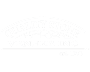 QSV Logo.Web